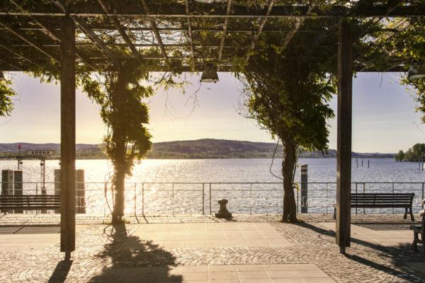 Pergolato di Glicini sul lago Maggiore