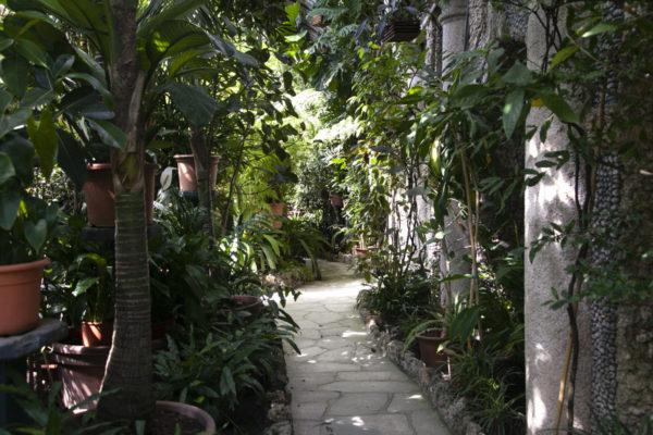 Serra Botanica - Isola Bella
