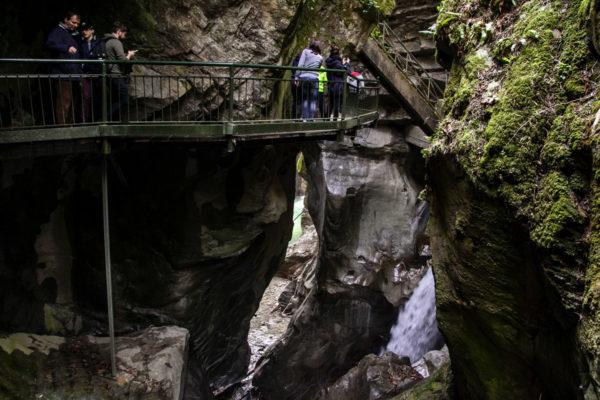 Gita nella natura sul Lago di Como - Bellano