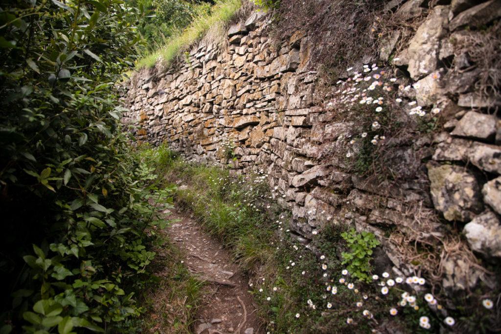 Passeggiata per Castello di Vezio
