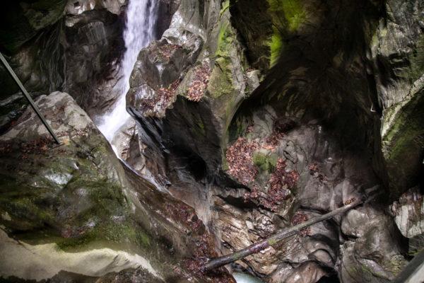 Roccia e acqua - Natura sul lago di Como