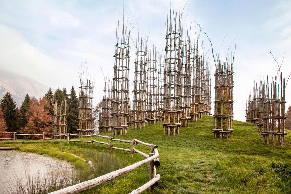 42 piante di Faggio nella Cattedrale Vegetale di Bergamo