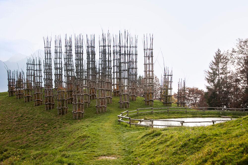 Cattedrale Vegetale e Laghetto - Oltre il Colle Bergamo - Grumello di Arera