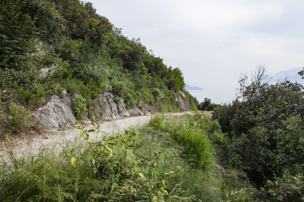 Direzione Tempesta - Trekking di 5 km