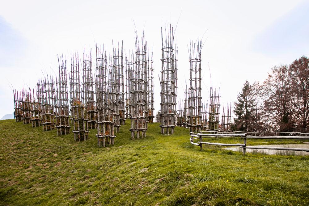 Il Profilo della Cattedrale Vegetale Bergamasca - Installazione Artistica