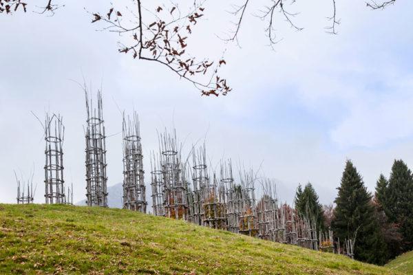 Il Profilo della Cattedrale Vegetale di Giuliano Mauri