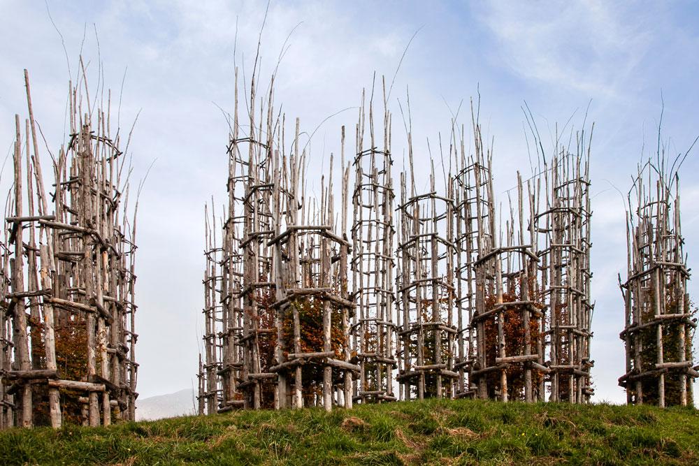 Le Colonne della Cattedrale Vegetale nel Bergamasco