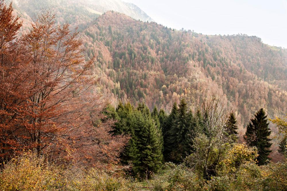 Monte Arera in Autunno