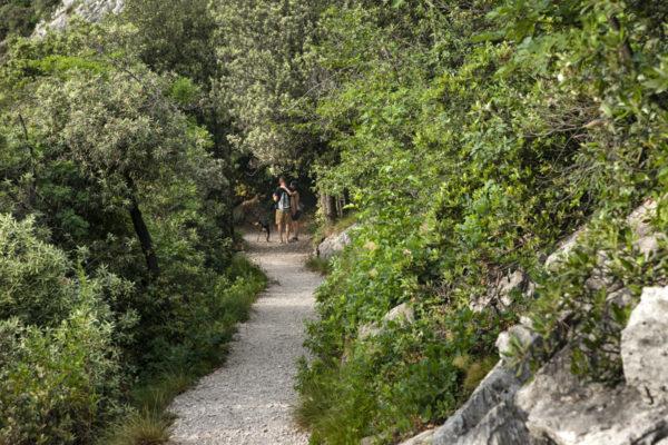 Natura nel facile trekking Busatte Tempesta a Torbole