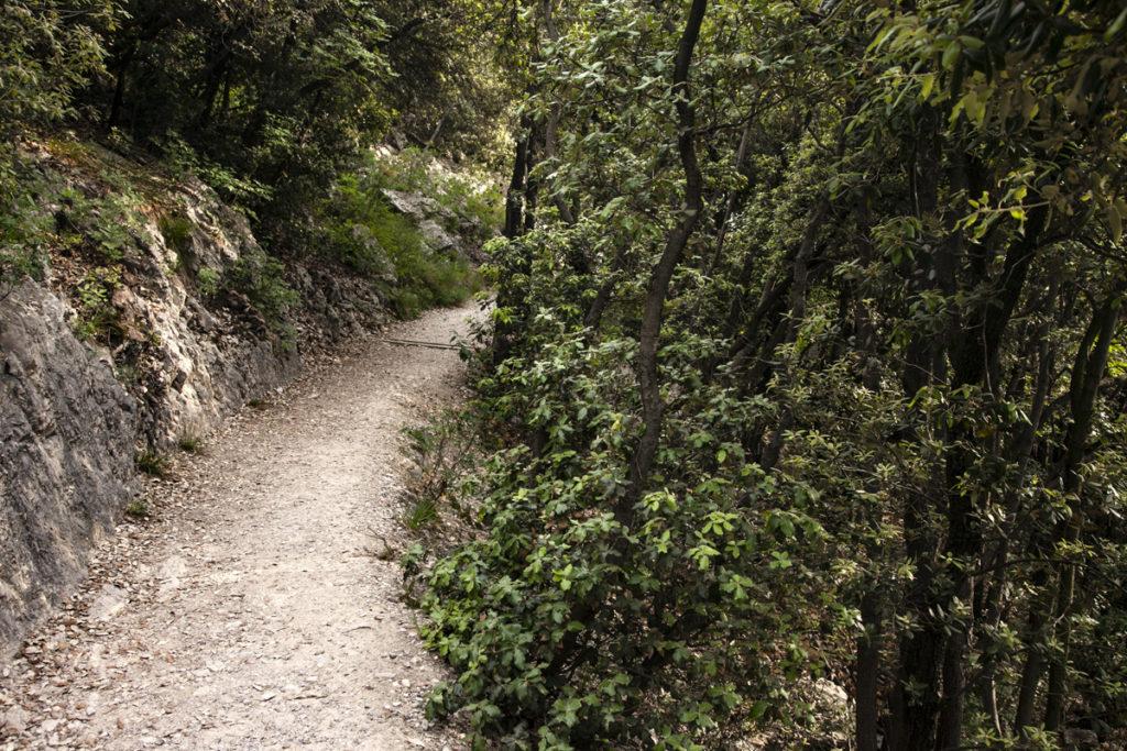 Scorci di Natura - Cammino Busatte Tempesta a Torbole