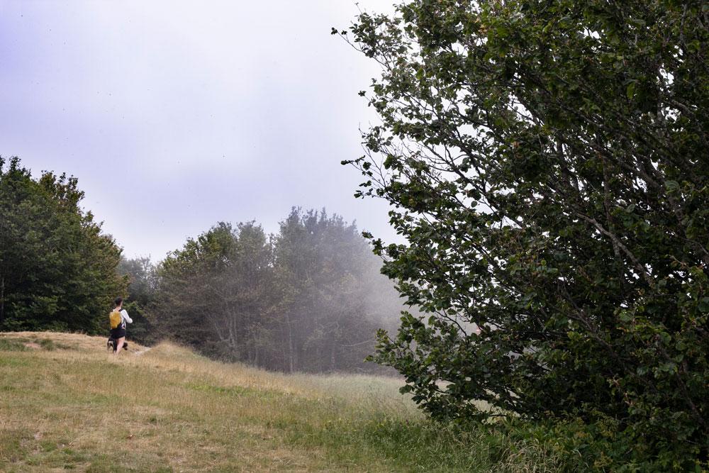 Tra le Nuvole sul Monte Falterona