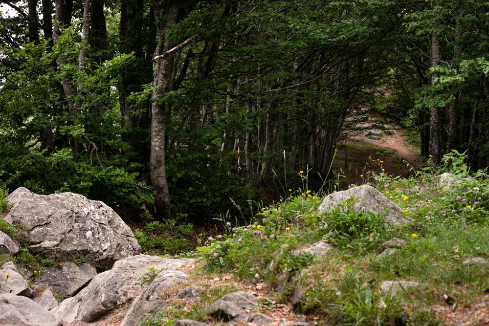 Tra roccia e Natura - Trekking Monte Falco