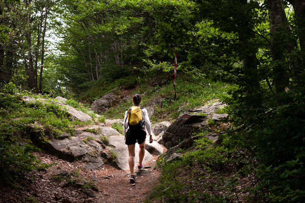 Trekking Monte Falterona
