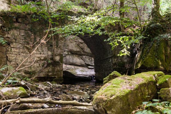 Gioghetto - Ponte di Pietra nella Foresta Casentinese