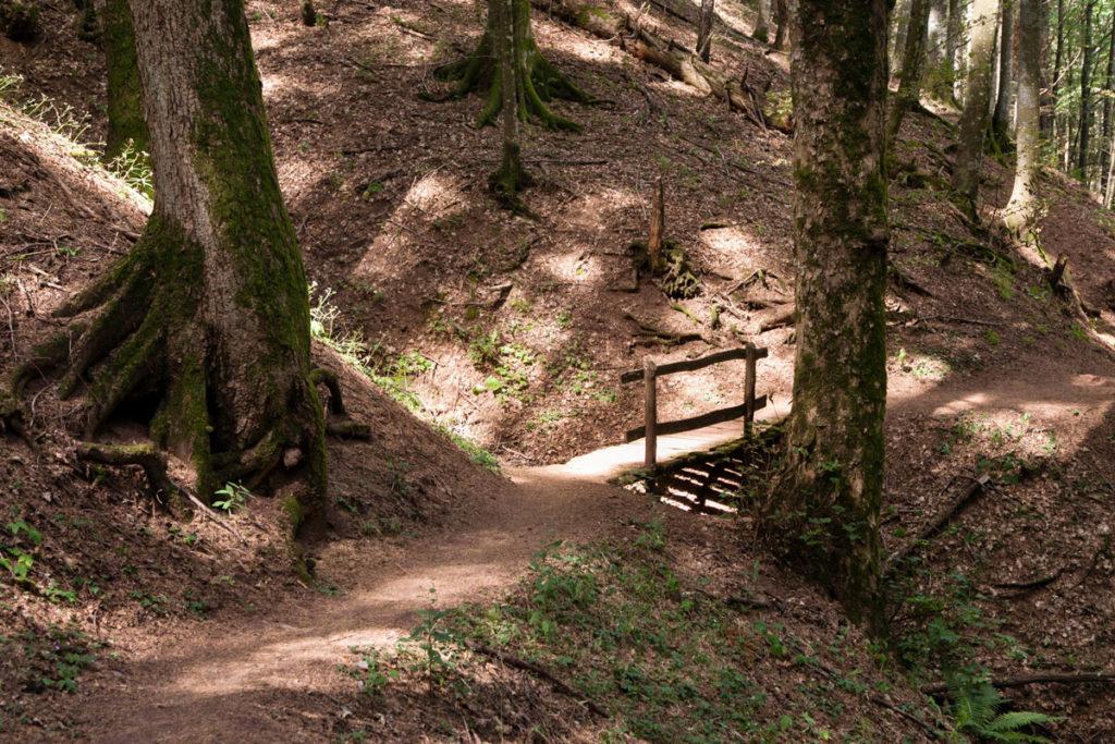 Ponte di Legno su ruscello
