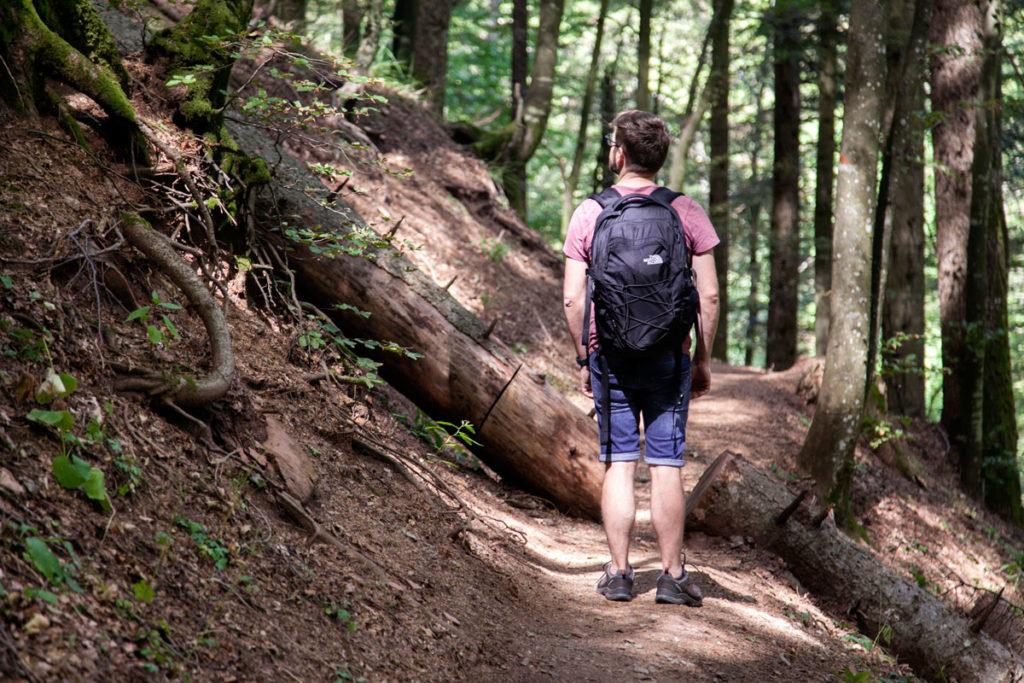 Ragazzo nella foresta - Trekking