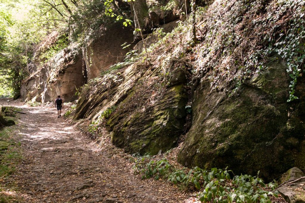 Salita degli Acuti - Trekking dai Fangacci a Prato alla Penna