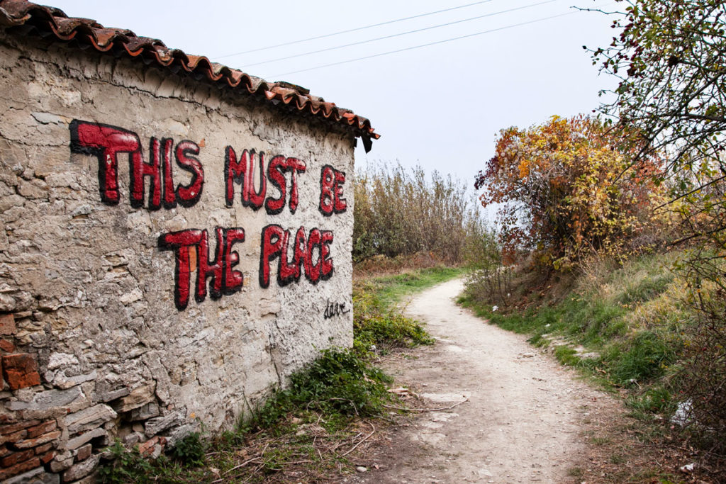This Must Be The Place - Murales del Vulcano del Monte Busca