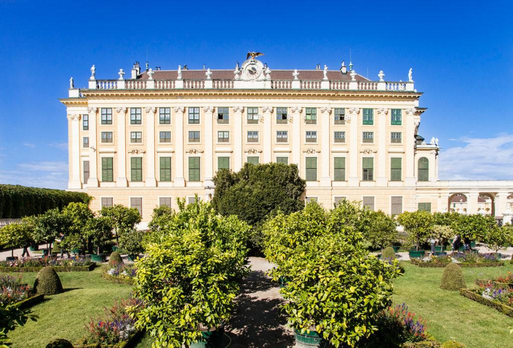 Agrumi nel giardino del principe e palazzo Schonbrunn