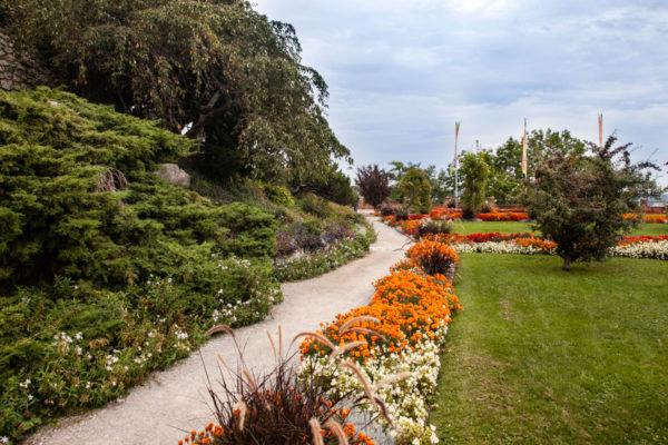 Aiuole Fiorite e Giardini Terrazzati