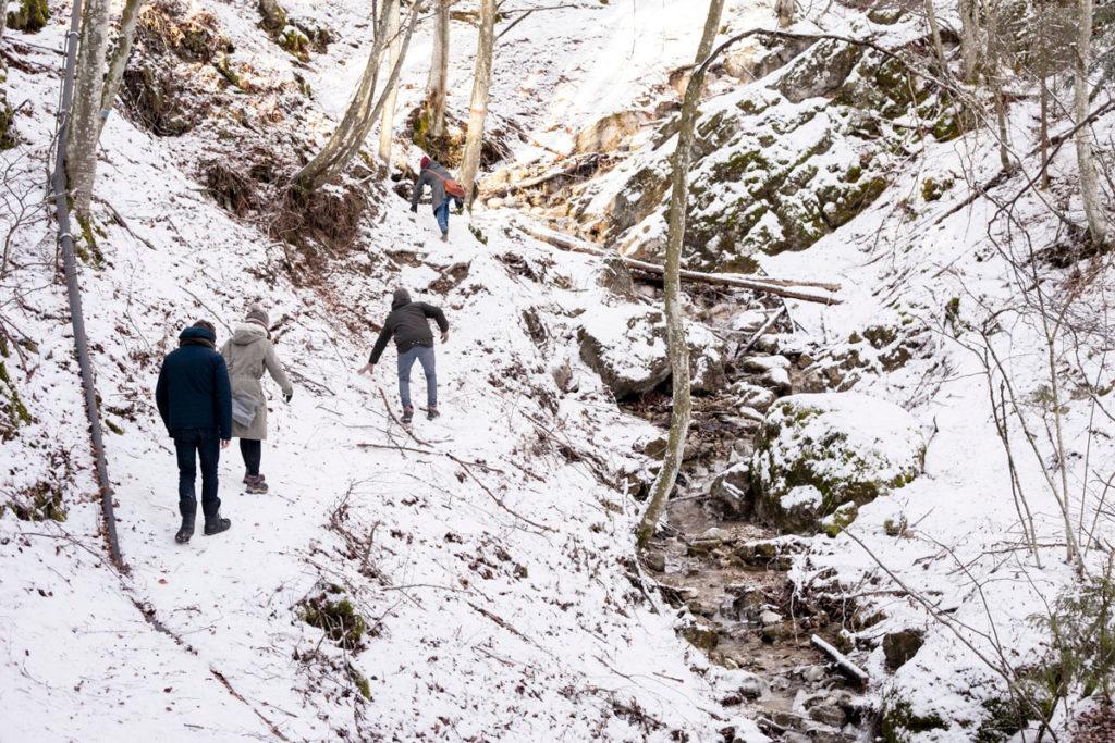 Bordala - Bosco Innevato - Capodanno sulla Neve