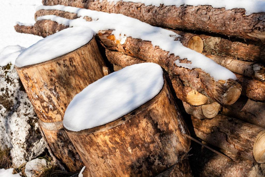 Cuscini di Nevi sulla legna Tagliata - Bordala