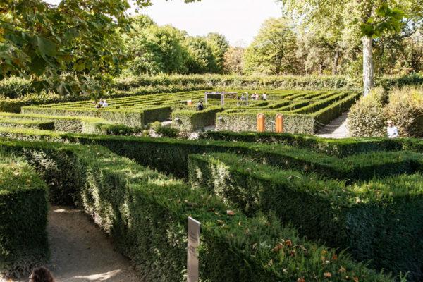 Labirinto nel castello di Schonbrunn