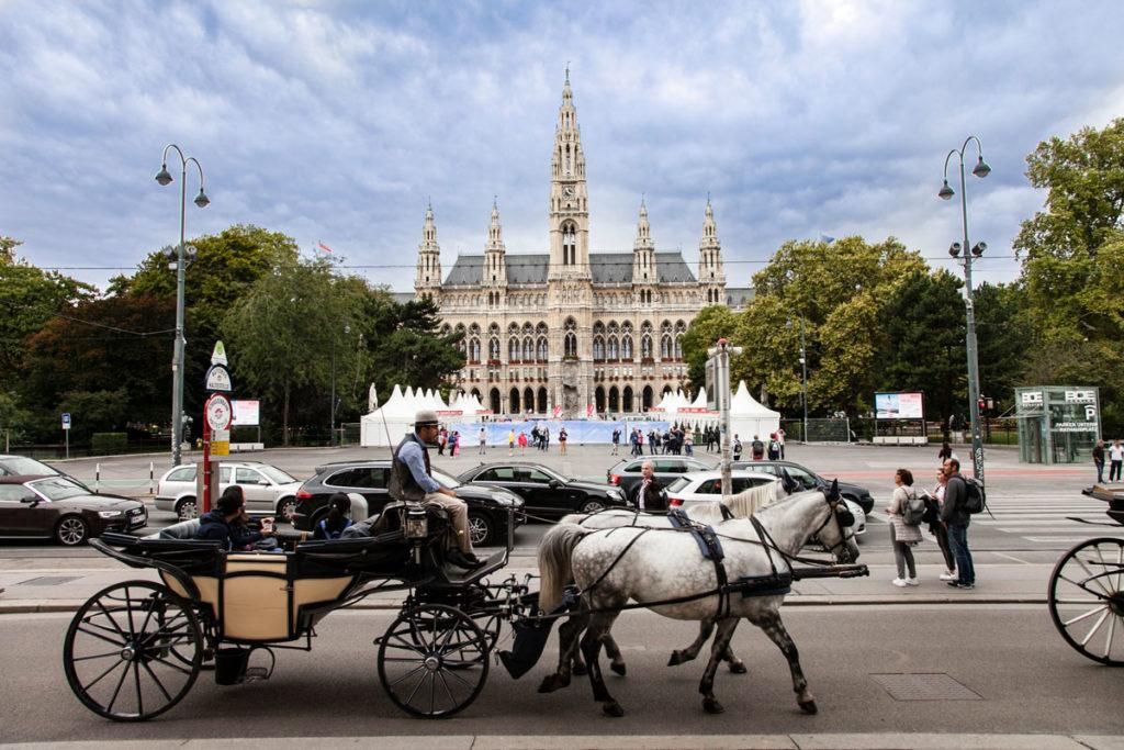 Neues Rathaus - Municipio di Vienna