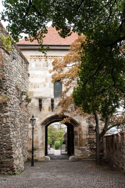 Torre di ingresso al castello - Porta Corvino