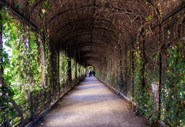 Tunnel di Piante - Giardino del Principe - kronprinzengarten Privy Garden