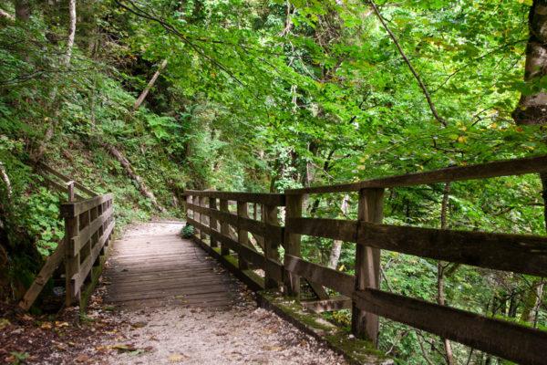 Trekking nella natura di Hallstatt - Hallstatt in un giorno