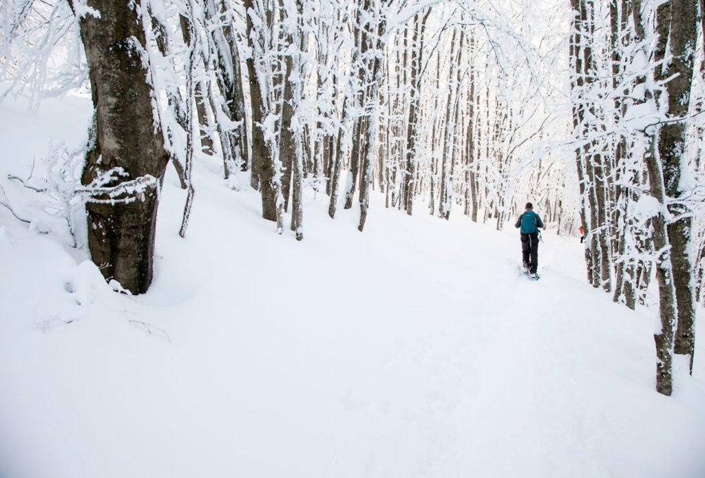 Trekking tra le neve - Rifugio la Calla vero Prati della Burraia
