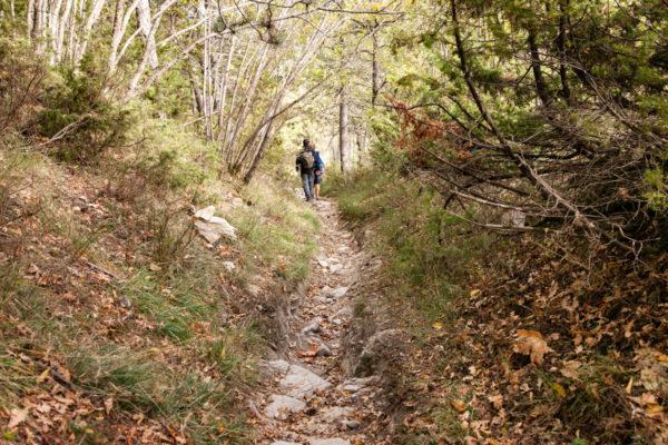 Amici - Trekking in Romagna sul monte Carpano