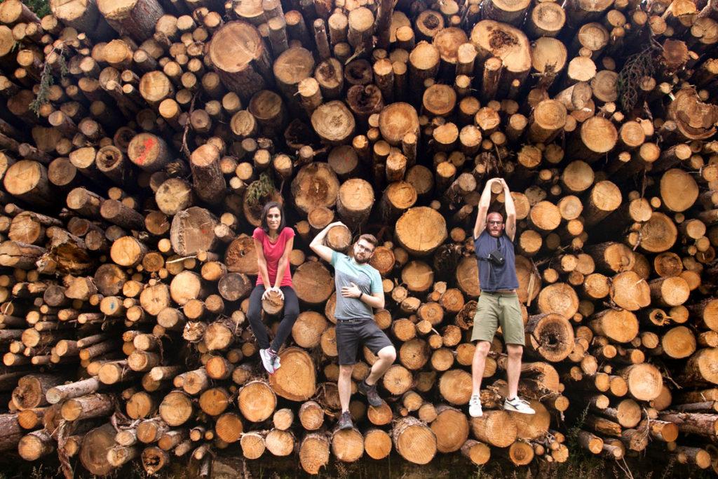 Amici appesi ai tronchi di legno