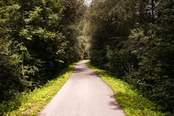 Biciclettata San Candido Lienz - Percorso in mezzo alla natura