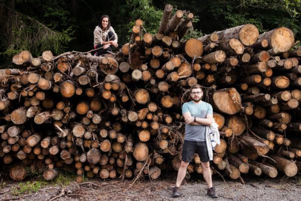 Cataste di legno per inverno