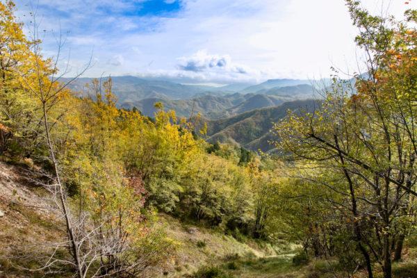 Panorama sulle valli di Bagno di Romagna