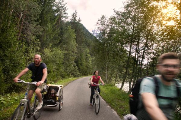 Ragazzi e cani sulla pista ciclabile del Trentino Alto Adige
