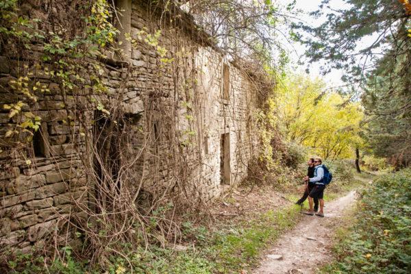 Ruderi negli Appenini Romagnoli - Foreste Casentinesi