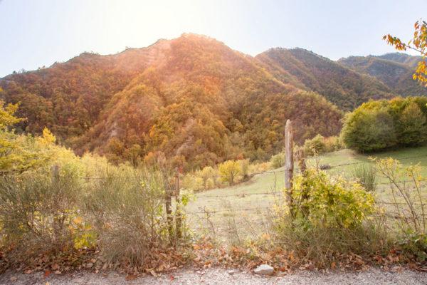 Sole alto sul Trekking da Bagno di Romagna al Monte Carpano