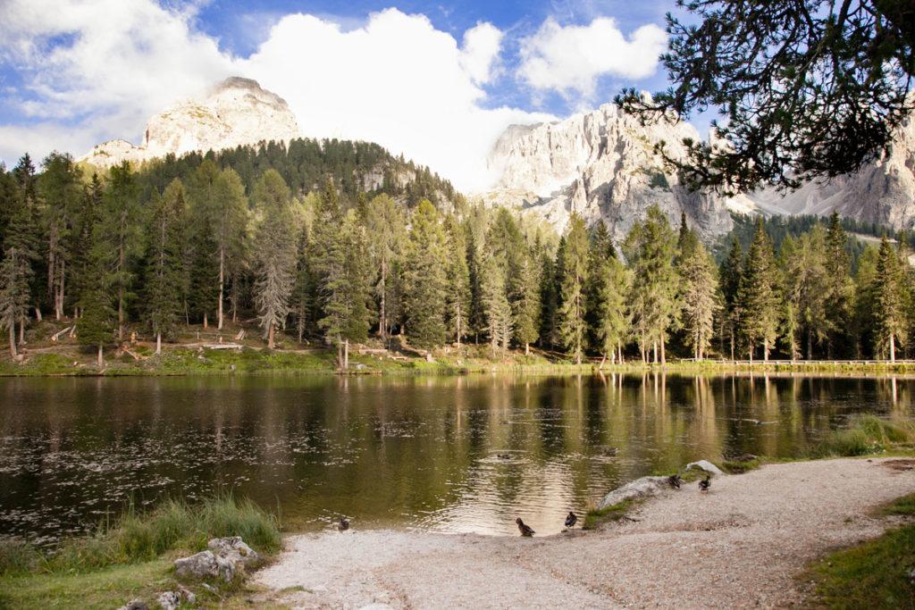 Panorama Lago Antorno - Parco Naturale Tre Cime