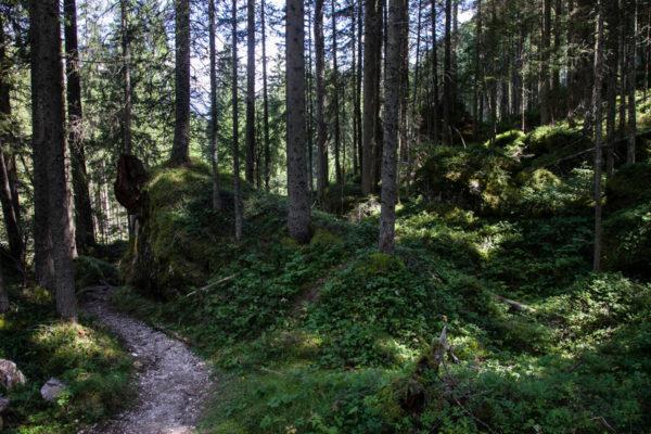 Parco naturale Fanes Sennes Braies