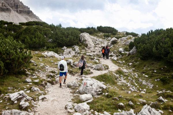 Splendido Trekking nelle Alpi