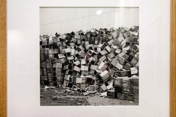 Vivian Maier - Fotografa governante - le forme