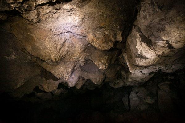 Sala Quarina o dei Mammelloni - Nursery dei pipistrelli