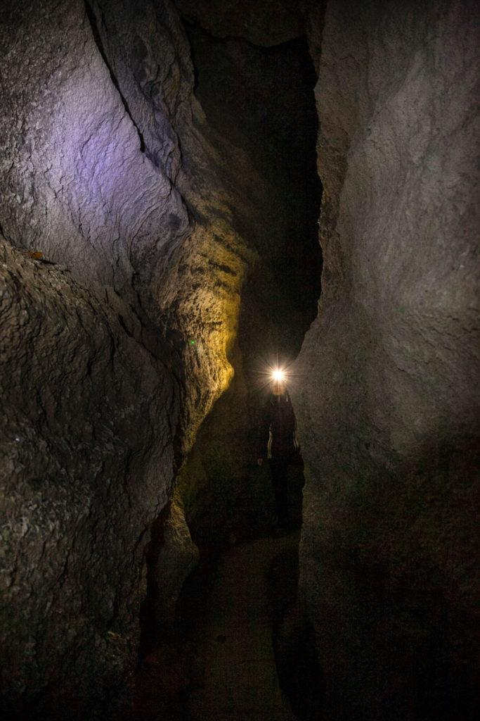Visita guidate alle Grotte di Onferno - Pipistrelli