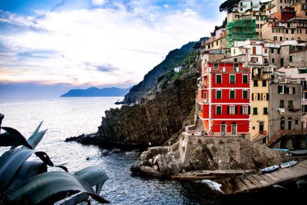 Agavi e case di Riomaggiore