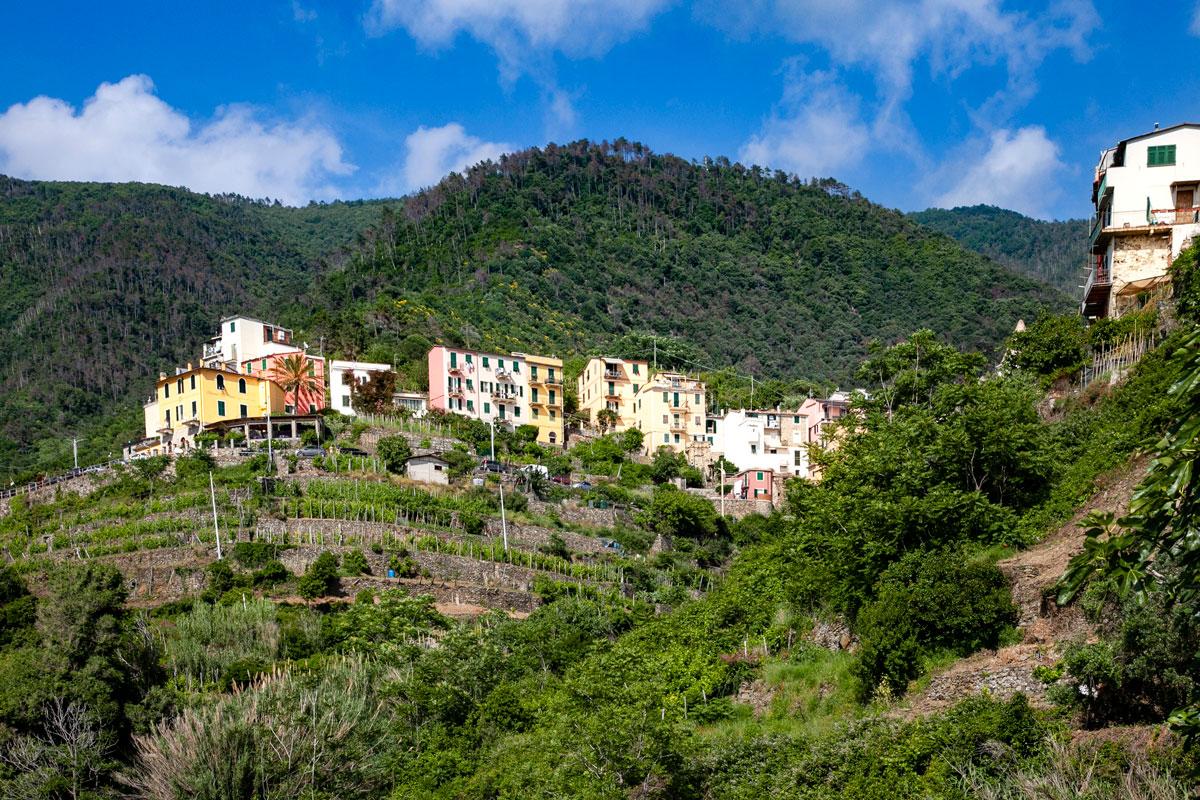 Borgo di Corniglia sui Terrazzamenti - Parco Naturale delle Cinque Terre
