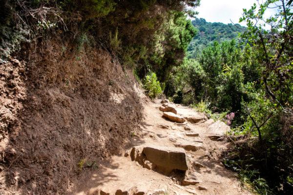 Come Raggiungere Vernazza - Sentiero Azzurro da Monterosso al Mare