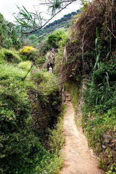 Parco Nazionale delle Cinque Terre - Trekking nell natura